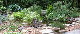 Koi Ponds and Water Gardens