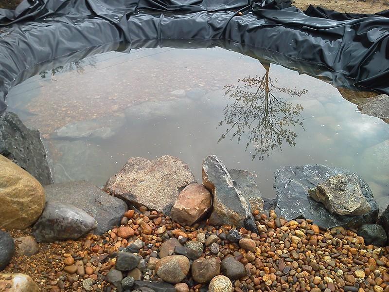 water-pond-photo-08