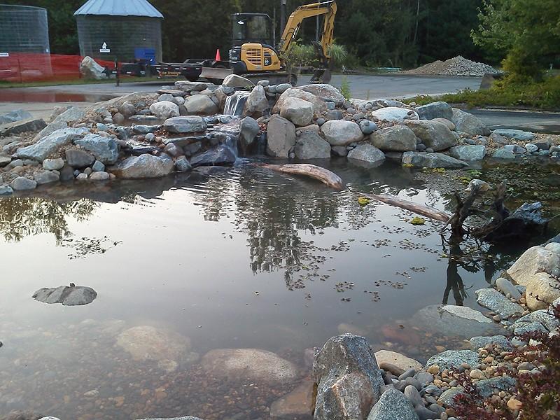 water-pond-photo-10